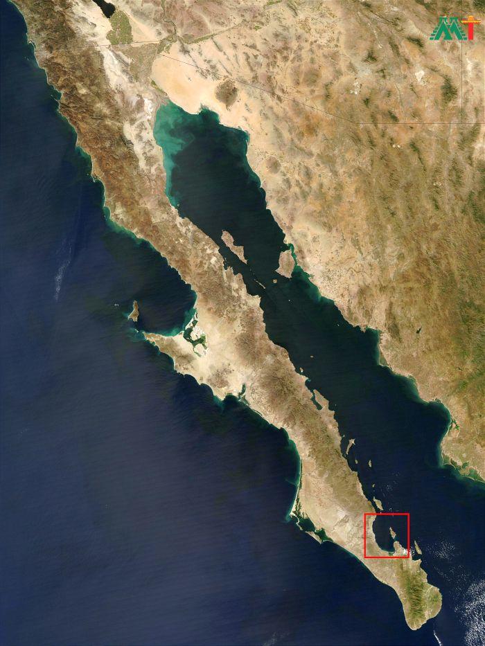 Baja La Paz (mexico)