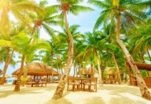 Playa Del Carmen Vacation Ideas