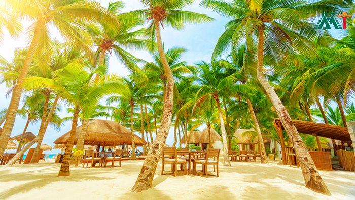 Playa Del Carmen Vacation Ideas