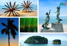Puerto Vallarta Vacation Ideas